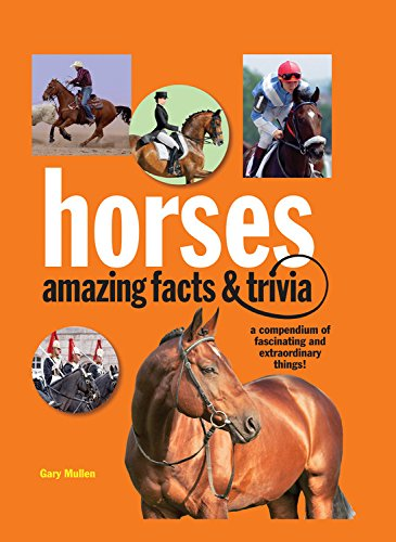 horses-amazing-facts-and-trivia