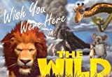 Hyperion Staff: Wish You Were Here in the Wild