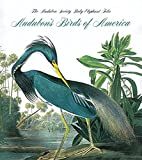 Peterson, Roger Tory: Audubon's Birds Of America
