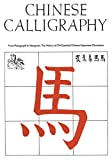 Fazzioli, Edoardo: Chinese Calligraphy: From Pictograph to Ideogram The History of 214 Essential Chinese/Japanese Characters
