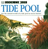 Gunzi, Christiane: Tide Pool
