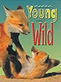 Hischfield, Laura: Young and Wild (Wildcats - Cougars) (B13)