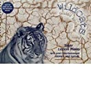 Hanifin, Erin: Tigers Combined Lesson Plans / Adventure Journals for New Tigers Add-on Pack (Wildcats)