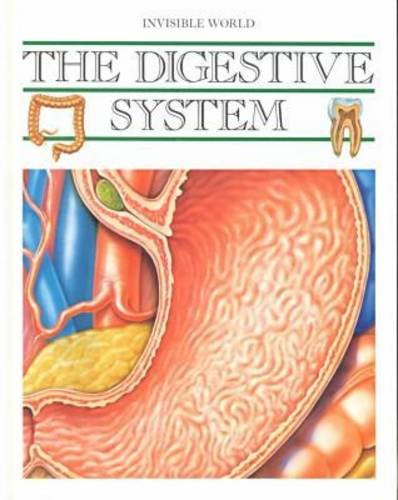 the-digestive-system-the-invisible-world