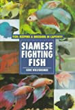 Wolfsheimer, Gene: Siamese Fighting Fish
