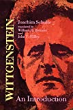 Schulte, Joachim: Wittgenstein: An Introduction