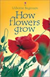 Helbrough, Emma: How Flowers Grow