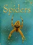 Usborne Beginners: Spiders by Rebecca Gilpin