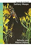 Kevin O'Neill: Solitary Wasps: Behavior and Natural History (Cornell Series in Arthropod Biology)