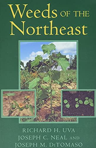 weeds-of-the-northeast