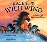 Markle, Sandra: Race the Wild Wind: A Story of the Sable Island Horses