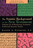Mr. Joseph A. Fitzmyer: A Wandering Aramaean: Collected Aramaic Essays (Semitic Background of the New Testament)