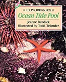 Bendick, Jeanne: Exploring an Ocean Tide Pool