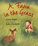 Ryder, Joanne: A Fawn in the Grass