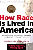 Correspondents of the New York Times: How Race Is Lived in America: Pulling Together, Pulling Apart