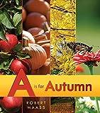 Maass, Robert: A Is for Autumn