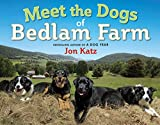 Katz, Jon: Meet the Dogs of Bedlam Farm
