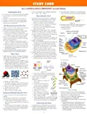 Campbell, Neil: Study Card for Campbell-Reece Biology Seventh Edition