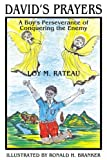 Loy M. Rateau: David's Prayers: A Boy's Perseverance of Conquering the Enemy