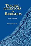Lane, Geraldine: Tracing Ancestors in Barbados