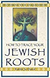 David, Jo: How to Trace Your Jewish Roots: Discovering Your Unique History