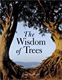 Gifford, Jane: The Wisdom of Trees: Mysteries, Magic, and Medicine