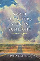 Small Disasters Seen in Sunlight: Poems…