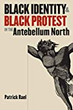 Rael, Patrick: Black Identity &amp; Black Protest in the Antebellum North