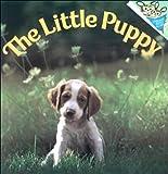 Dunn, Judy: The Little Puppy