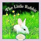 Dunn, Judy: The Little Rabbit (Turtleback School & Library Binding Edition)