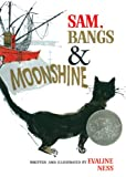 Ness, Evaline: Sam, Bangs And Moonshine (Turtleback School & Library Binding Edition)