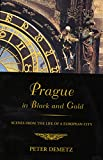 Demetz, Peter: Prague in Black and Gold: Scenes from the Life of a European City