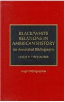 Black/white relations in American history :…