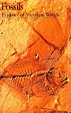 Gayrard-Valy, Yvette: Fossils: Evidence of Vanished Worlds