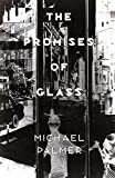 Palmer, Michael: The Promises of Glass