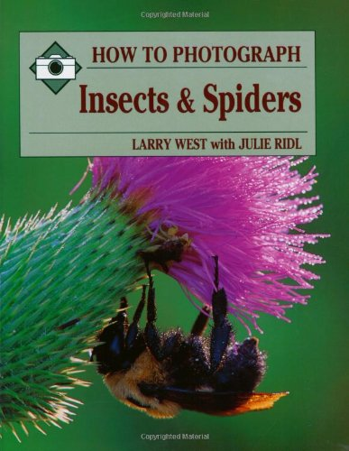 how-to-photograph-insects-spiders-how-to-photograph-series