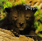 Bauer, Peggy: Wild Puppies