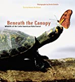 Matthews, Downs: Beneath the Canopy: Wildlife of the Latin American Rain Forest