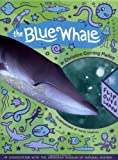 Christine Corning Malloy: The Blue Whale: Flip Out and Learn (Pull-Out Book)