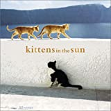 Silvester, Hans: Kittens in the Sun