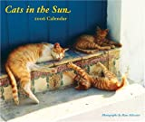 Silvester, Hans: Cats in the Sun 2006 Wall Calendar