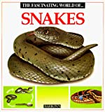 Angels Julivert, Maria: The Fascinating World of Snakes