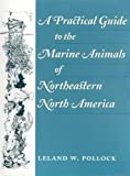 Pollock, Leland W.: A Practical Guide to the Marine Animals of Northeastern North America