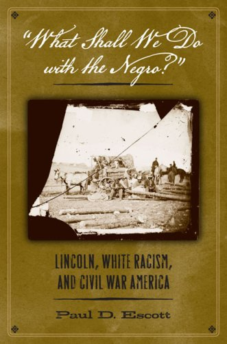 what-shall-we-do-with-the-negro-lincoln-white-racism-and-civil-war-america