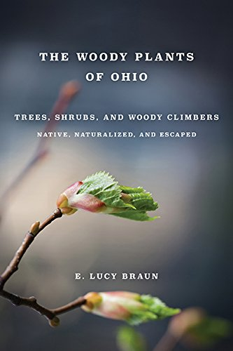 woody-plants-of-ohio-trees-shrubs-and-woody-climbers-native