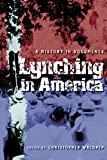 Waldrep, Christopher: Lynching in America: A History in Documents