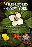 Bessette, Alan E.: Wildflowers of New York in Color