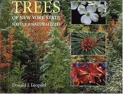 trees-of-new-york-state-native-and-naturalized