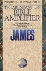 James: True Religion in Suffering (The…