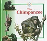 Crewe, Sabrina: The Chimpanzee (Life Cycles (Raintree Hardcover))